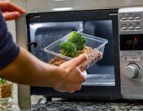 Microwave makanan