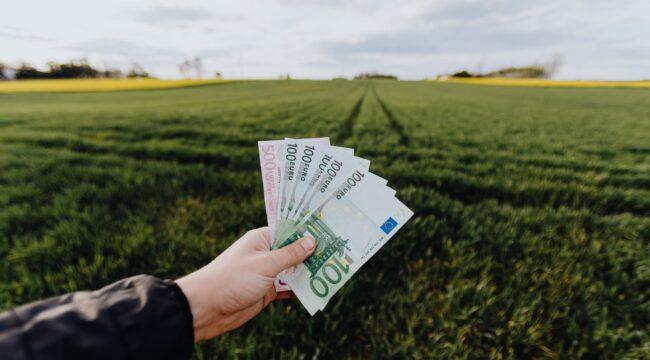 Frugal living menjadi gaya hidup yang sering digunakan banyak miliarder untuk mengelola keuangannya sehingga lebih hemat dan sehat. (Foto: Pexels)